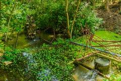 Vattenturbinsystem Royaltyfria Foton
