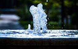 Vattenvänner arkivfoto