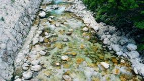 Vattenvåren går ner vaggar i ett skogvatten som rusar till och med floden arkivfilmer