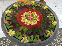 Vattenvask med att sväva blommadeconations i ubud, Bali, Indonesien Royaltyfria Foton