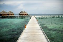 Vattenvillor på Maldiverna Royaltyfri Fotografi