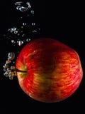 Vattnigt äpple royaltyfria bilder