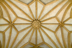 Vault. Yellow Gothic vault on cathedral Royalty Free Stock Photos