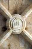 Vault keystone. Of the Castle of Arques Chapel Stock Image