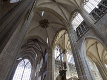 Vault Of St. Peter Church in Leuven Stock Images