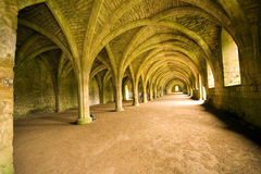 Vaulted ceiling Royalty Free Stock Photo