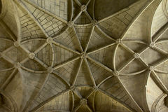 Vaulted ceiling Royalty Free Stock Image