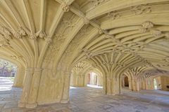 Vaulted ceiling Royalty Free Stock Photos