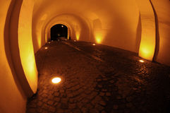 Vaulted passage Royalty Free Stock Photography