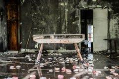 Vaulting buck in abandoned school gym in Pripyat Stock Image