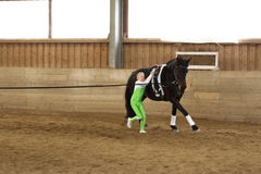 Vaulting exercise Stock Images