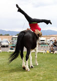 Vaulting Performance Royalty Free Stock Photo