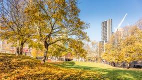Vauxhall, Londra, Regno Unito; 17 novembre 2017; Autumn Scene fotografie stock libere da diritti