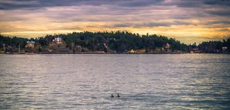 Vaxholm - April 07, 2017 : Panorama of the Stockholm archipelago stock images
