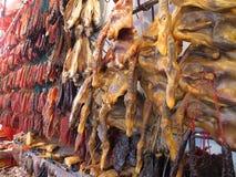 vaxt meatområde Royaltyfri Foto