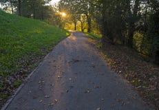 Vaya abajo del camino con el sol Fotos de archivo