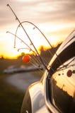 Vayamos a pescar Foto de archivo libre de regalías