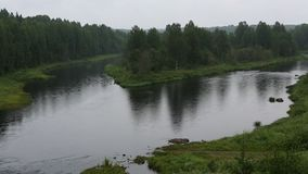 Vazhinka river, the border of the Leningrad region and Karelia Republic stock footage