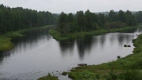 Vazhinkarivier, de grens van het gebied van Leningrad en de Republiek van Karelië stock footage