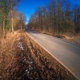 Vazio e longo caminho conduz profundamente na floresta Fotografia de Stock Royalty Free