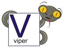 Víbora que guarda um sinal com a letra V Imagens de Stock