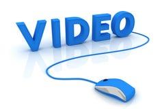 Vídeo Foto de archivo libre de regalías