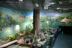 VDNKh Moskvarium - the biggest in Europe sea aquarium and entertainment center, Moscow, Russia Royalty Free Stock Photography