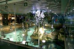 VDNKh Moskvarium - the biggest in Europe sea aquarium and entertainment center, Moscow, Russia Stock Photos