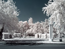VDNKh. Territory. Infra-red photo. Trees and flowerbeds on territory of complex VDNKh. Infra-red photo Stock Photos