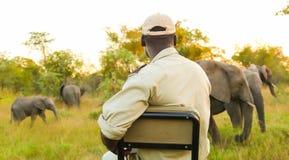 Veículo de Safari Tracking em um sul - reserva africana do jogo imagem de stock