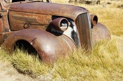 Veículo oxidado Fotografia de Stock Royalty Free