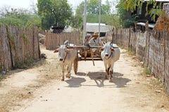 Veículo tradicional burmese, Myanmar Fotos de Stock