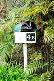 ve, po pocztę Skrzynki pocztowa skrzynki pocztowa listowego pudełka listowy pudełko otaczający zielonymi paprociami z poczta dżon Zdjęcie Royalty Free