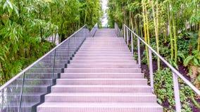 Vea de abajo hacia arriba en una escalera moderna del metal, rodeada Fotos de archivo