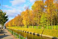 Vea de la 'promenade' el canal del cisne en jardín del verano con amarillo Fotografía de archivo