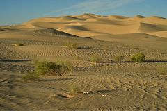 Vea el top de dunas de arena imperiales de la duna de arena, California, los E.E.U.U. Imágenes de archivo libres de regalías