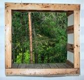 Vea hacia fuera la ventana en el bosque salvaje Fotos de archivo
