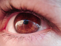 Vea Roma a través de mis ojos Imagen de archivo