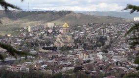 Vea Tbilisi, la catedral y las montañas, ramas de Sameba del abeto en el primero plano almacen de metraje de vídeo