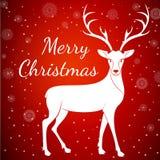 Veados vermelhos do Feliz Natal Fotografia de Stock Royalty Free
