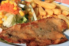 Veal cutlet with fries and salad Royalty Free Stock Photos