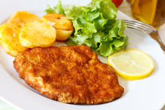 Veal Cutlet- Schnitzel - with Lettuce Royalty Free Stock Photography