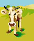 Veal in field Royalty Free Stock Images