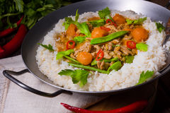 Veal Fricassee with rice Royalty Free Stock Image