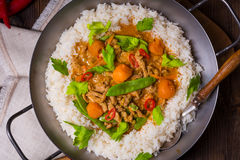 Veal Fricassee with rice Royalty Free Stock Images