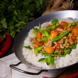 Veal Fricassee with rice Stock Images