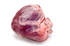 Veal heart Stock Photography