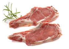 Veal meat chop. In front of white background stock photography