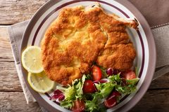 Veal milanese cotoletta alla milanese with lemon and fresh veg. Etable salad close-up on a plate. horizontal top view from above Stock Image