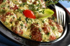 Veal mince in the cream Royalty Free Stock Images